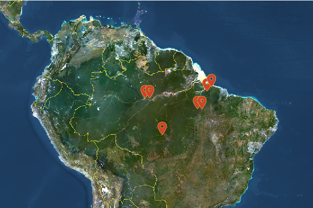 Graphic of the Amazon rainforest region with map locators